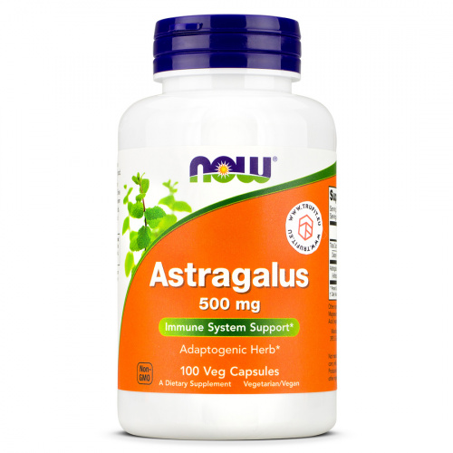 Now Foods - Astragalus 500mg
